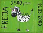 Freja zebra